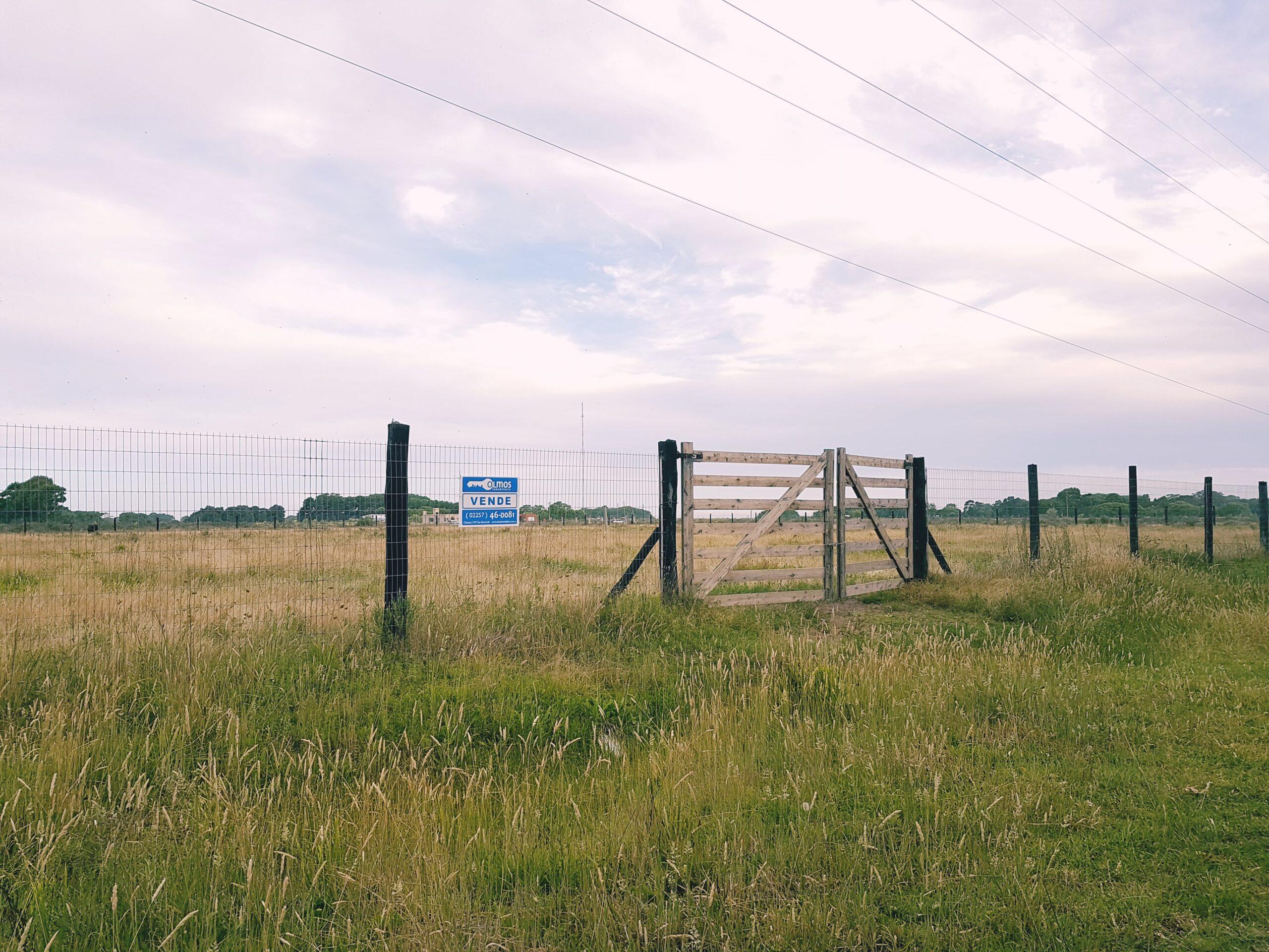 Hectárea en Pavón – Planos aprobados, estudio de suelo – FINANCIACIÓN